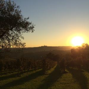 foto_alice_tramonto_800x800