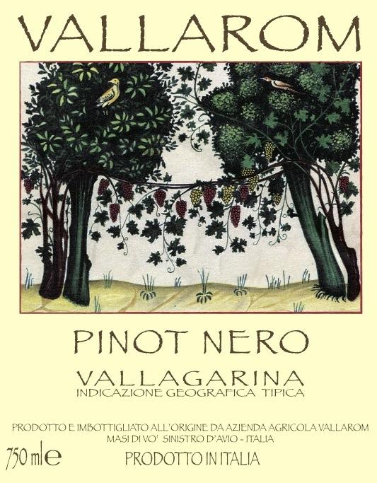 Vallarom Vallagarina Rosso Pinot Nero 'Vigneto Ventrat'