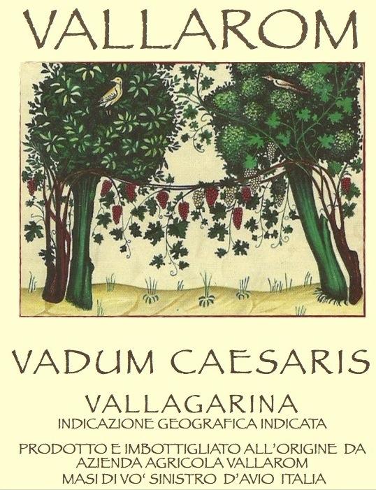 Vallarom Vallagarina Bianco 'Vadum Caesaris'
