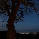 foto_corte_sant_alda_albero_800x533