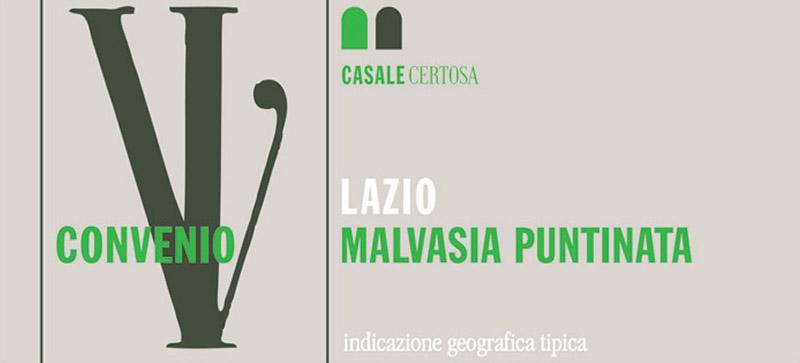 Casale Certosa Malvasia Puntinata