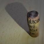 foto_gaspare_buscemi_tappo_800x532