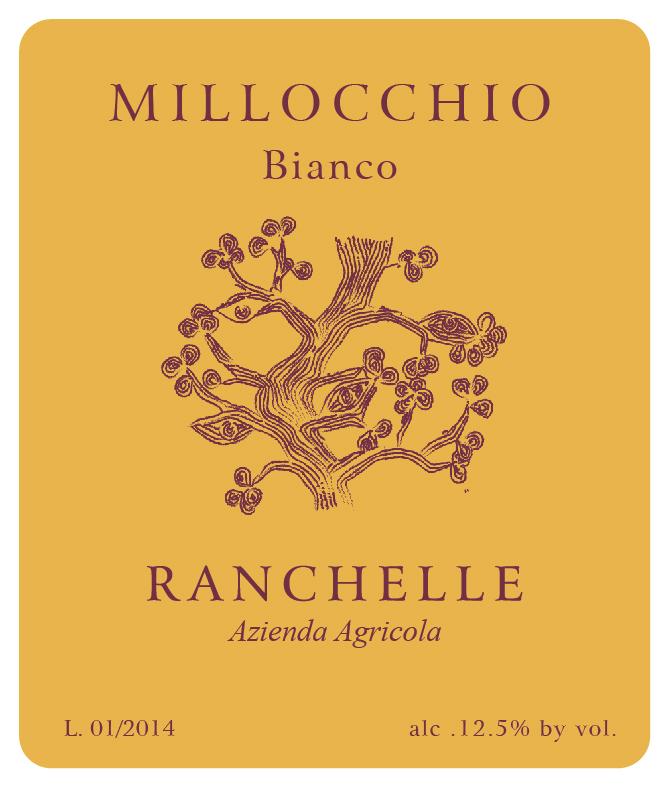 Ranchelle Bianco 'Millocchio'